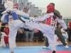 ann-arbor-taaekwondo-tournament-2013_01