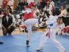 ann-arbor-taaekwondo-tournament-2013_02