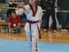 ann-arbor-taaekwondo-tournament-2013_03