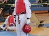 ann-arbor-taaekwondo-tournament-2013_04