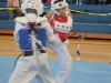 ann-arbor-taaekwondo-tournament-2013_05