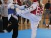 ann-arbor-taaekwondo-tournament-2013_06