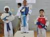 ann-arbor-taaekwondo-tournament-2013_07