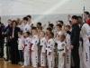 ann-arbor-taaekwondo-tournament-2013_08
